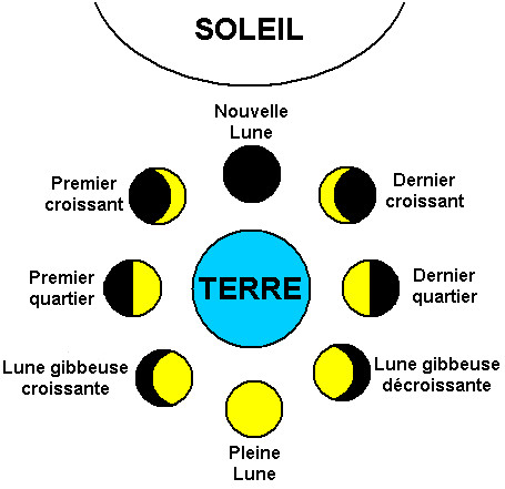 illustration des 8 phases de la lune